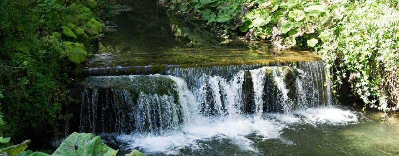 """Acqua Bene Comune, soddisfatto il Comitato: """"La gestione in Irpinia rimarrà pubblica"""""""