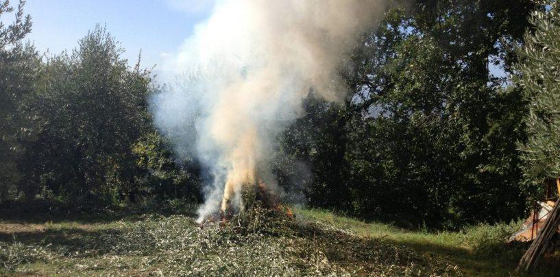 Roghi agricoli, altre tre persone denunciate in Irpinia