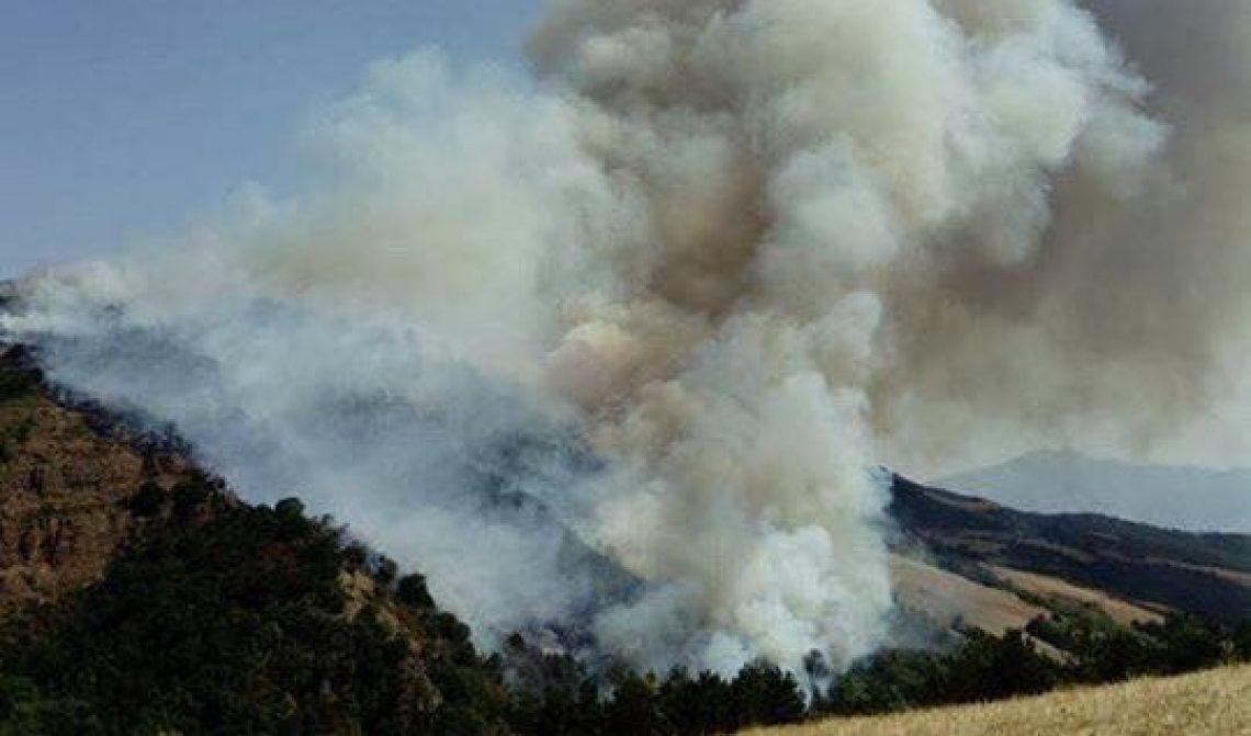 Incendio ad Aquilonia: le foto della gigantesca colonna di fumo
