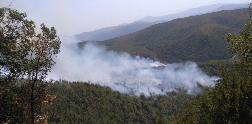 L'Irpinia brucia: dopo Bonito, fiamme anche a Montoro