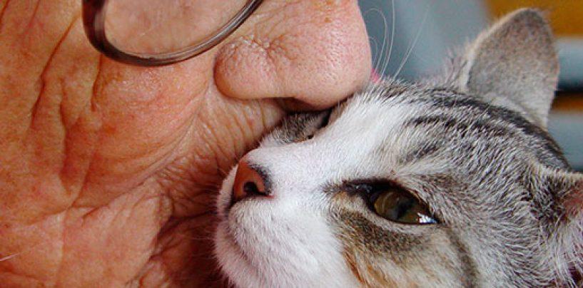 Progetto 'Care': i benefici della Pet Therapy per gli anziani che vivono nelle RSA