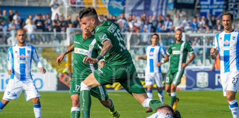 Virtus Entella-Avellino 1-1, le pagelle