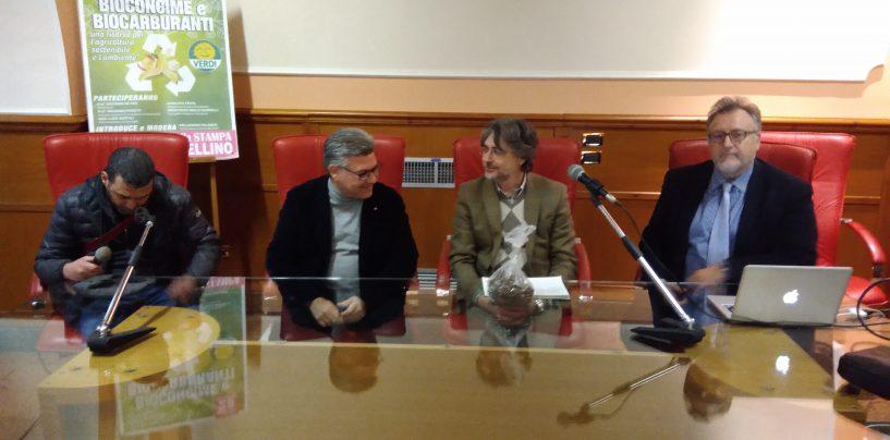 """Verdi, Borrelli ad Avellino: """"Sì al compostaggio. Clientele nella sanità? Occhio al Moscati"""""""