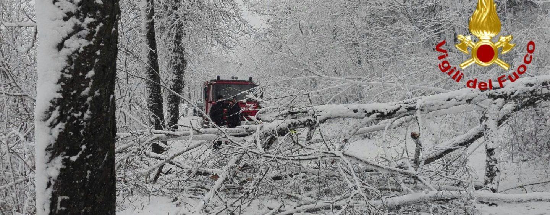 FOTO/ Neve in Irpinia: viabilità in tilt e scuole chiuse
