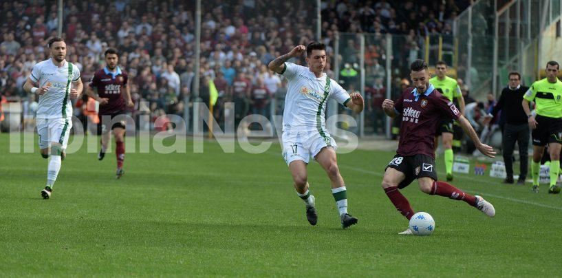Avellino Calcio – Derby in rosso: le decisioni del Giudice Sportivo