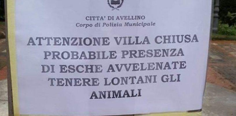 Esche avvelenate per cani: chiude la Villa Comunale ad Avellino
