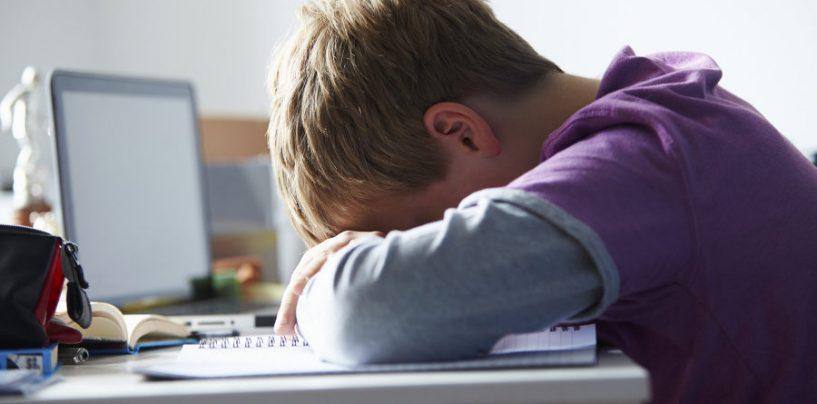 Bullismo e cyberbullismo: confronto con gli studenti all'Amabile di Avellino