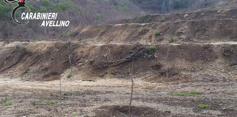 Terrazzamenti abusivi per trasformare bosco in noccioleto: sequestrata l'area