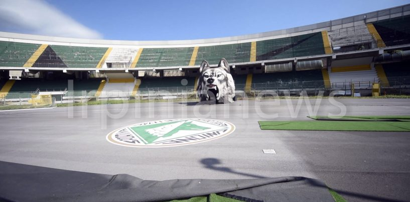 Sciopero e riapertura stadi, Lega Pro col fiato sospeso: Avellino alla finestra
