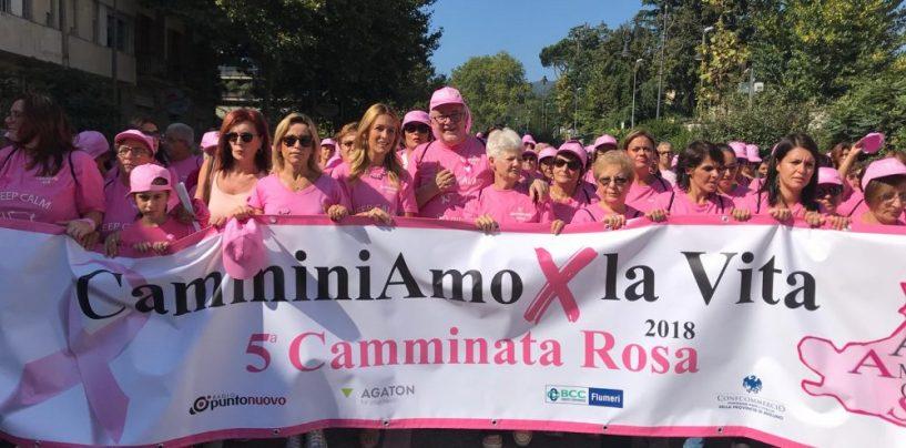 Rione Mazzini, tutto pronto per la festa della Beata Vergine Maria: ci sarà anche la Camminata Rosa