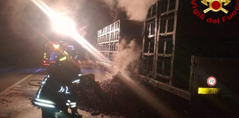 In fiamme automezzo che trasportava pomodori, arrivano i vigili del fuoco
