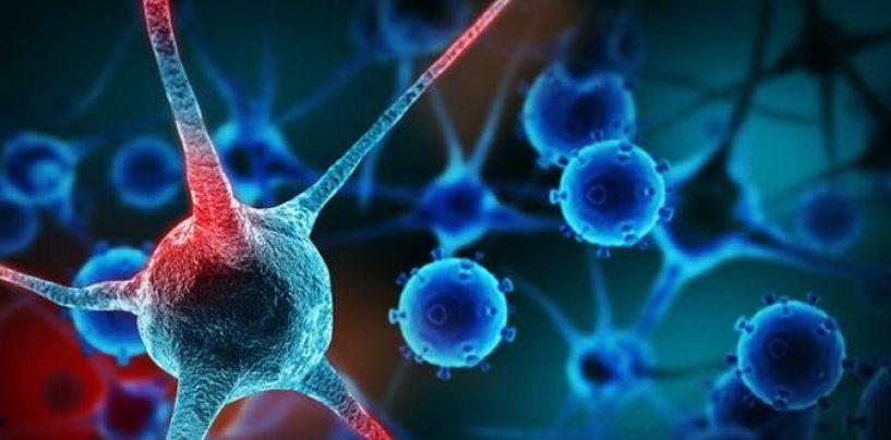 Tumore al seno: una ricerca dell'Università di Salerno protagonista di un'importante scoperta per il contrasto della malattia
