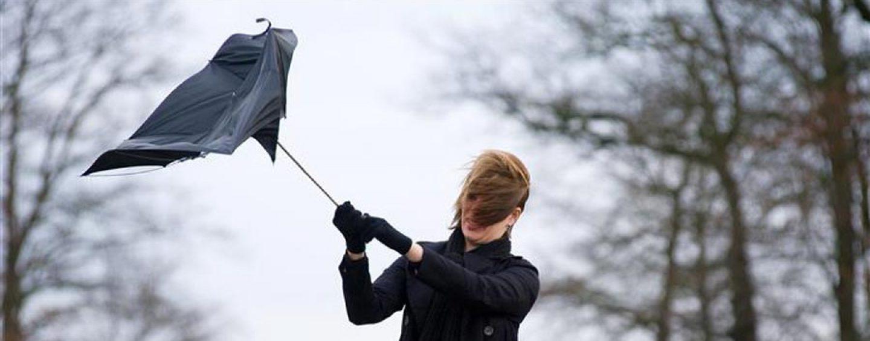 Rovesci e vento forte: da stanotte scatta l'allerta meteo della Protezione Civile