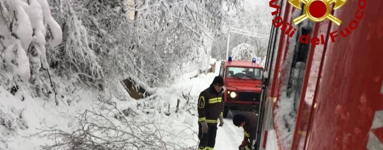 Neve e disagi: rimossi i rami lungo la provinciale Vallata-Trevico