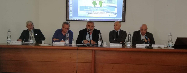 Autismo, ad Avellino si formano specialisti nell'assistenza con esperti internazionali