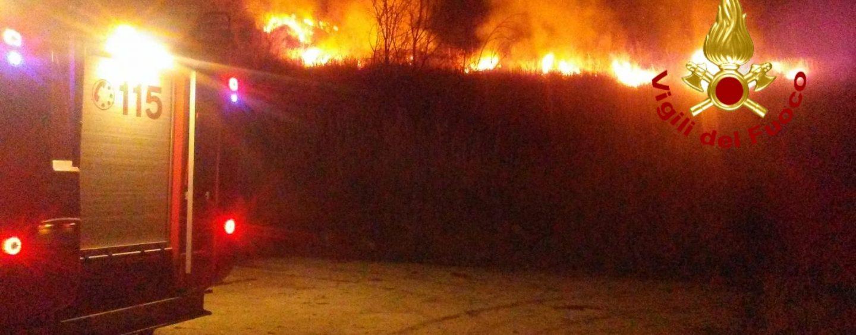 Bosco in fiamme a Taurasi, arrivano i Vigili del Fuoco