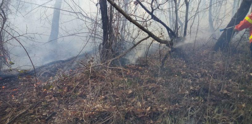 L'Irpinia brucia già: roghi a Summonte e Volturara
