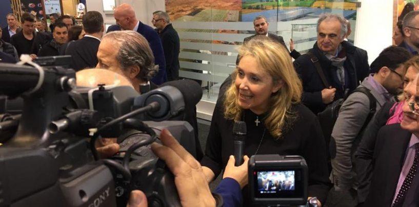 Olivicoltura, a Benevento l'incontro con il sottosegretario all'Agricoltura Alessandra Pesce