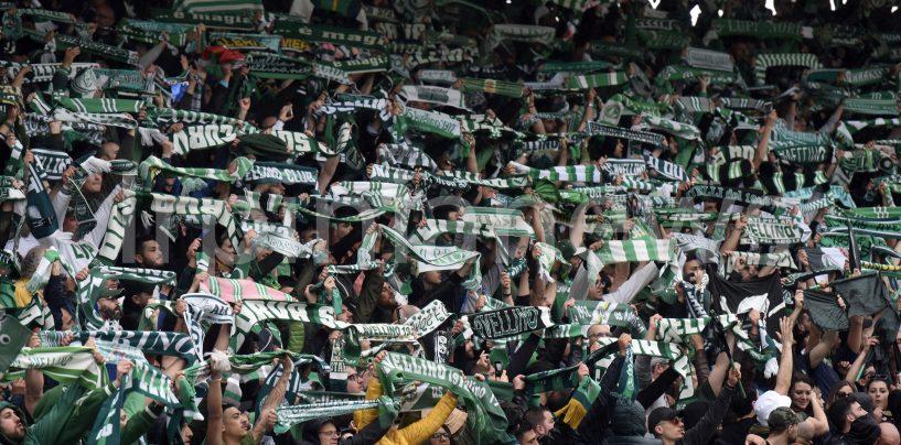 Lega Pro, l'Avellino si sente già a casa. C'è il Bari: Partenio in festa