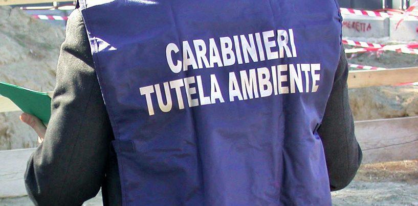 Carabinieri Noe nell'area Asi: sequestrato impianto di stoccaggio rifiuti