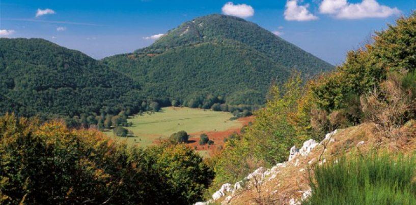 Sviluppo turistico e promozione agricoltura sociale, i bandi del Gal Partenio