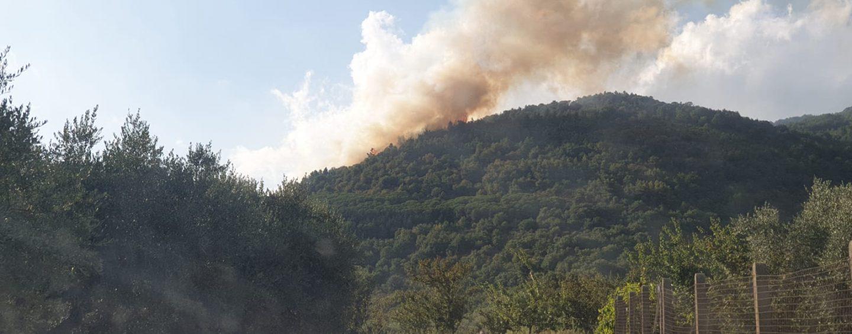 Ferragosto di fuoco, roghi ad Avella e Cervinara