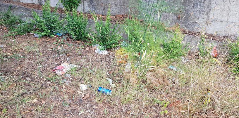 """Giornata ecologica ad Ariano, dall'amministrazione il monito: """"Ripuliamo insieme la città"""""""