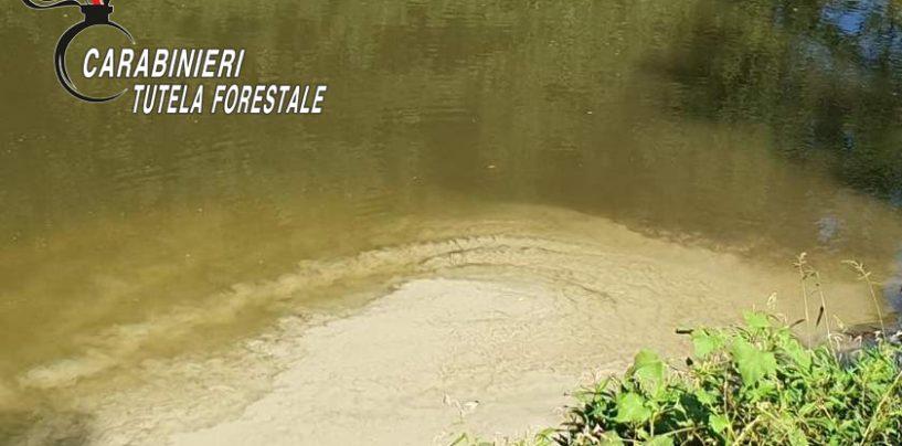 Ancora sversamenti industriali nel fiume Sabato, individuato il responsabile dell'azienda inquinante