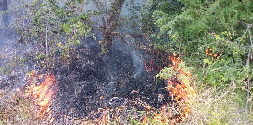 Domenica all'insegna di caldo e incendi in Irpinia. In fumo 20 ettari di territorio