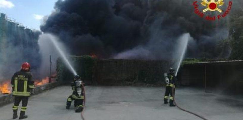 """Pianodardine, operazioni di spegnimento dell'incendio terminate ieri sera. Comandante vigili del fuoco: """"Intervenuti appena ricevuto l'allarme"""""""