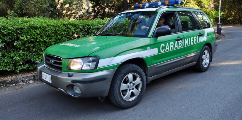 Mugnano del Cardinale, abbatte una pianta di quercia in area protetta: 50enne nei guai