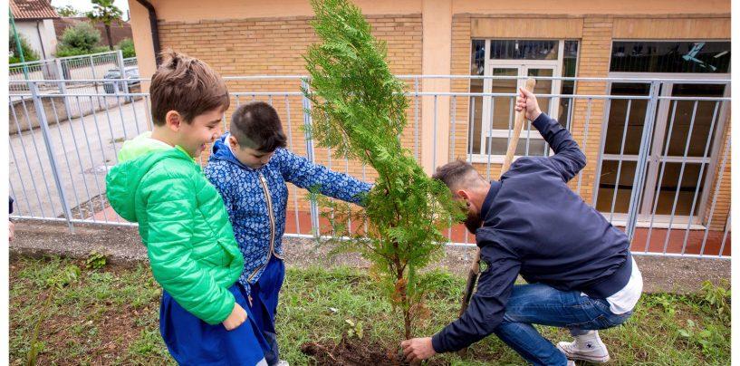 FOTO / Tutti uniti per l'ambiente: piccoli studenti piantano nuovi alberi nelle scuole di Paternopoli e Taurasi