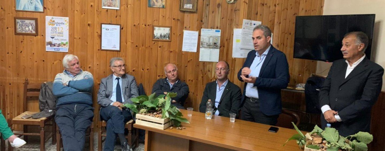 Crisi della nocciola, Petracca: Regione in campo per lo stato di calamità