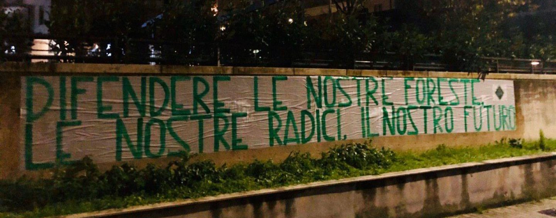 """La Festa dell'albero secondo Casapound: """"Difendiamo le nostre foreste"""""""
