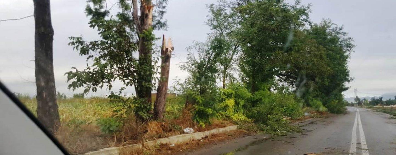 FOTO / Bomba d'acqua su Caserta, campi allagati e stalle distrutte