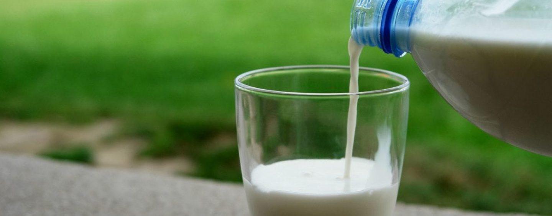 Latte contaminato in Germania. Scatta l'allerta nella UE