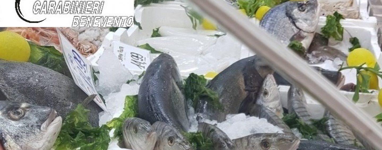 Pesce mal conservato, sequestro da 300mila euro dei carabinieri