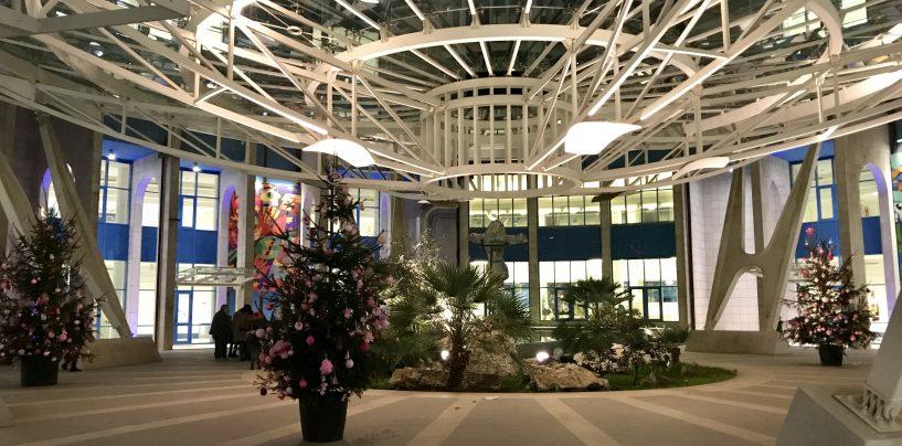 Christmas Bubbles rosa, questo pomeriggio si terrà l'accensione degli alberi di Natale all'ospedale Moscati