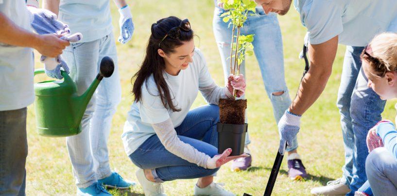 Le 5 idee di volontariato ambientale per la prossima estate