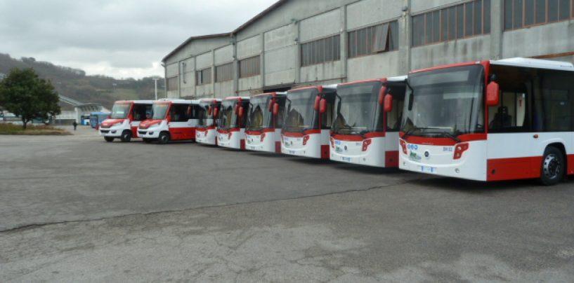 L'Air implementa la flotta, da giovedì 8 nuovi pullman nel circuito urbano