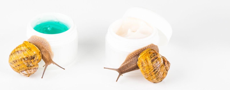Cosmetici biologici: quali sono le loro caratteristiche e perché è consigliabile usarli