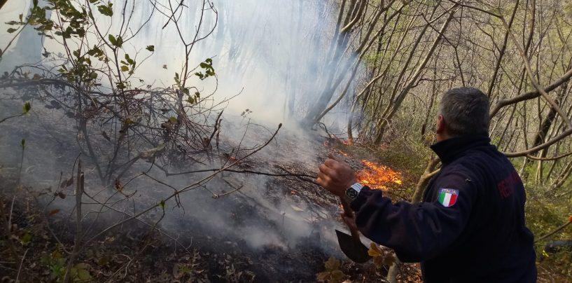 Non solo l'emergenza Coronavirus, bruciano i boschi di Forino