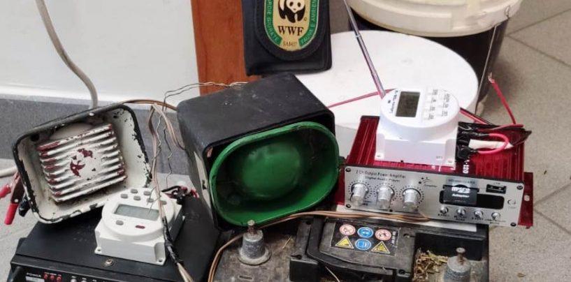 Wwf Italia , nuova operazione anti bracconaggio nel Parco Nazionale del Vesuvio