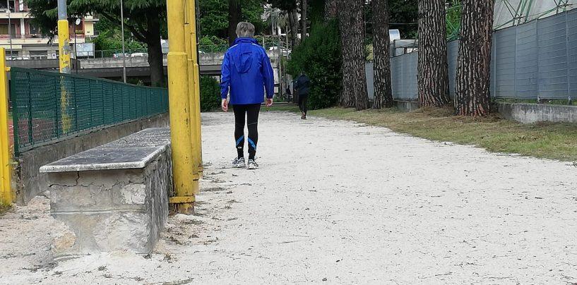 FOTO / Campo Coni, da oggi si passeggia. Il pomeriggio dentro massimo un'ora e venti. Da lunedì via alla corsa