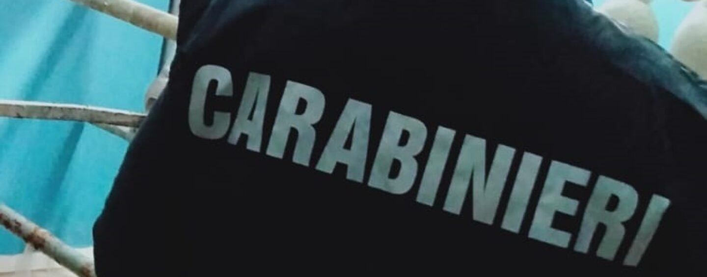 Caseifici sotto controllo, sanzioni e sequestri dei Carabinieri