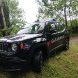 Puliscono i noccioleti e bruciano i residui: due denunce a Monteforte e Mugnano
