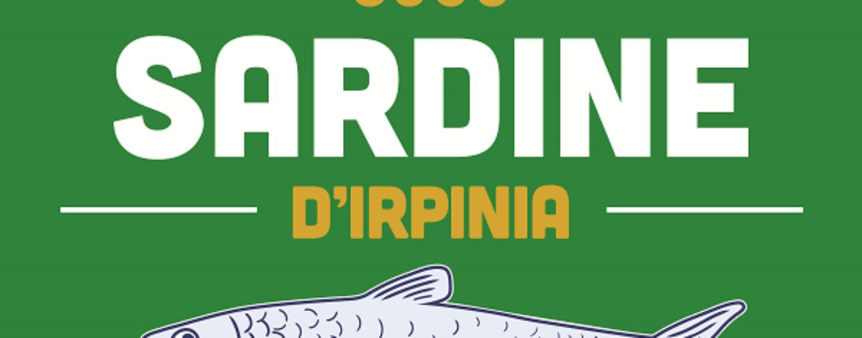 L'Irpinia verso le Regionali, meno selfie più politica: le richieste delle Sardine ai candidati irpini