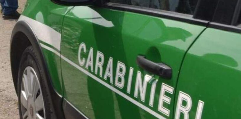 Castel Baronia: 40enne denunciato per incendio boschivo colposo