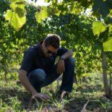 Agricoltura, sostenibilità e innovazione: ecco come avviarsi alla professione di tecnico agronomo