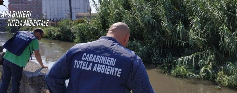 Fiume Sarno: 50 persone denunciate per stoccaggio abusivo di rifiuti speciali